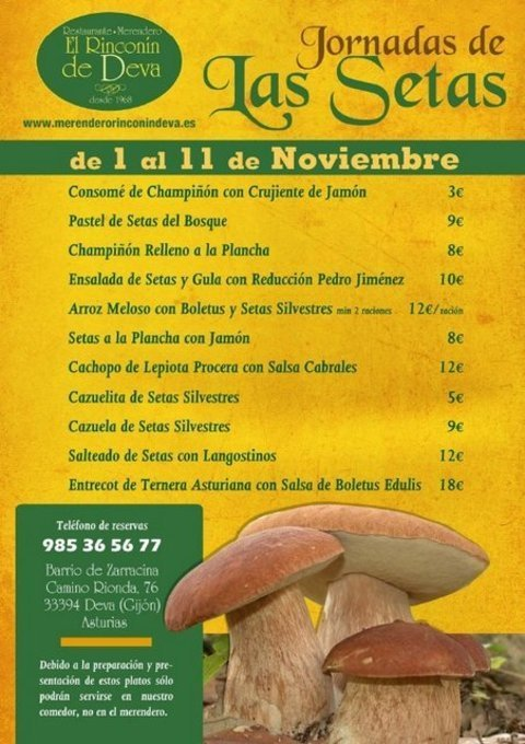 Rinconin de Deva - JORNADAS DE LAS SETAS DEL 1 AL 11 DE NOVIEMBRE 2012 - El Rinconín de Deva